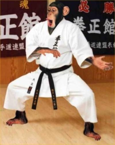 karate tinpan.jpg